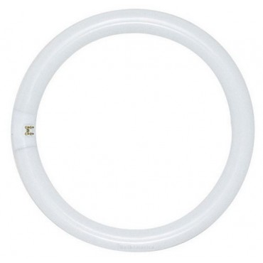 Philips Circlinebuis TLE TL5C 55W 840 4000K Rond 2Gx13 Koelwit